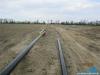Budowa gazociągu wysokiego ciśnienia DN150 Karmin-Jarocin - tycznie osi gazociagu