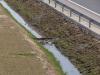 Przegroda filtracyjna na rowie drogowym jak próg piętrzący wodę