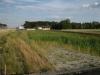 Zbiornik retencyjno-infiltracyjny (ekologiczny) Powierzchnia ok 1500m2